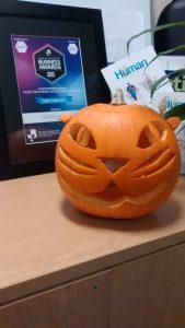 CT15 Pumpkin